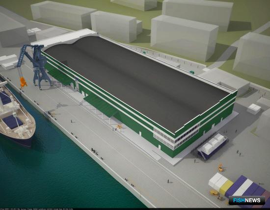 Диомидовский рыбный порт предложил стратегический проект по рыбопереработке