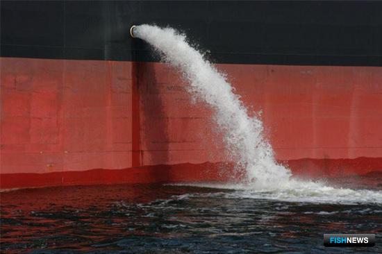 Балластные воды танкера. Фото из открытых источников