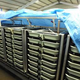 В одном из помещений «Туровки» уже введены в эксплуатацию инкубационные аппараты вертикального типа