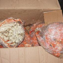 Почти 3,8 тонны крабовой продукции изъяли из незаконного оборота пограничники во Владивостоке. Фото пресс-группы Погрануправления ФСБ России по Приморскому краю