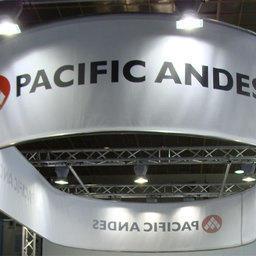 ФАС помогла Pacific Andes заработать 1,2 миллиарда долларов
