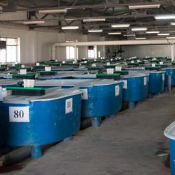 В успехах «БИОСА» сыграло значительную роль введение в строй цеха с уникальной установкой замкнутого водоснабжения. Фото пресс-службы и информации администрации губернатора Астраханской области.