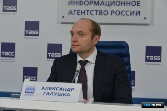 Глава Минвостокразвития Александр ГАЛУШКА. Фото ТАСС.