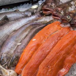 Рыбная продукция на выставке World Food Moscow