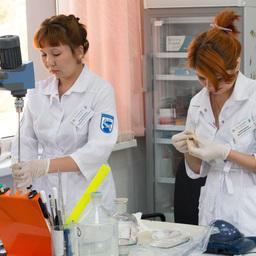 С 2012 г. в Икрянинском районе в составе КаспНИРХа работает научно-экспериментальный комплекс по молекулярно-генетическим исследованиям. Фото пресс-службы и информации администрации губернатора Астраханской области.