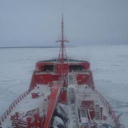 Со следующего года Росрыболовство начнет плановую замену действующего спасательного флота