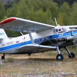 Аэровизуальные наблюдения выполнялись с помощью самолета АН-2. Фото пресс-службы МагаданНИРО