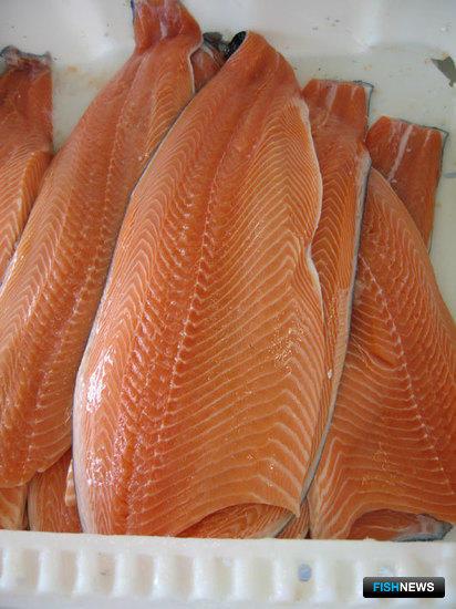 Искусство рыбопереработки доверяют машинам