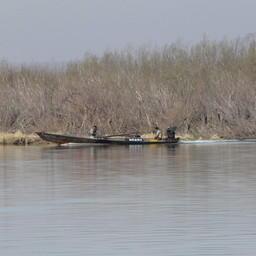 На проверенном участке реки промыслом занимались только китайские граждане. Фото пресс-службы Амурского теруправления Росрыболовства