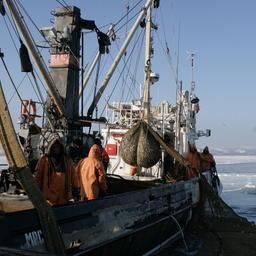 Рыбный промысел на Дальнем Востоке