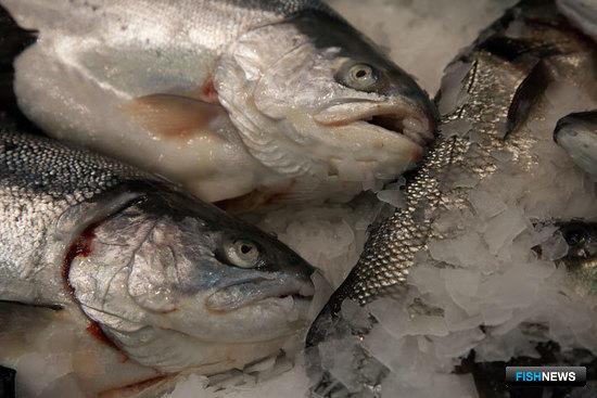 Рыбу Евросоюза будет продвигать специальный фонд