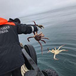 Пограничники и сотрудники Северо-Восточного теруправления Росрыболовства обнаружили 60 крабовых ловушек в Охотском море. Фото пресс-службы Погрануправления ФСБ России по восточному арктическому району