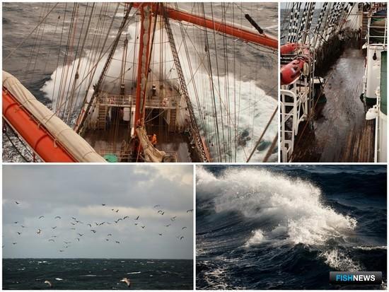 Северное море бывает очень неспокойно. Фото Александра Кучерука
