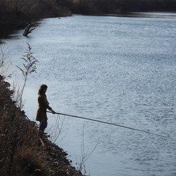 Споры о любительской рыбалке перенесли на осень