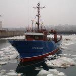 Владимир Путин поручил изучить потребность рыбаков в новых судах