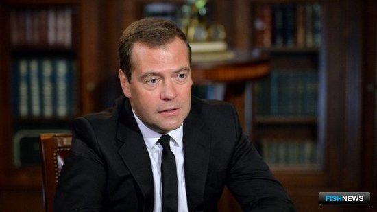 Премьер-министр РФ Дмитрий МЕДВЕДЕВ. Фото пресс-службы Правительства России.