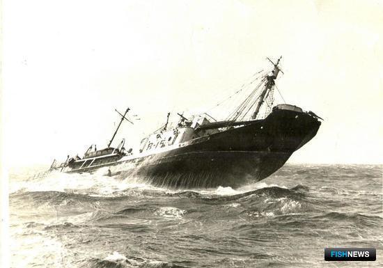 Китобоец на промысле. Фото из личного архива Виктора Щербатюка