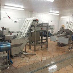 Машина автоматической загрузки рыбы в оборудование ARENCO_VMK _SEAC