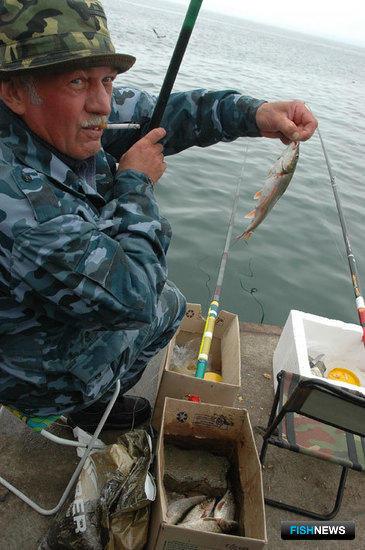 Время создавать оптовый рыбный рынок во Владивостоке