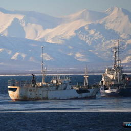 Virile в Авачинской бухте. Фото Пограничного управления ФСБ России по восточному арктическому району