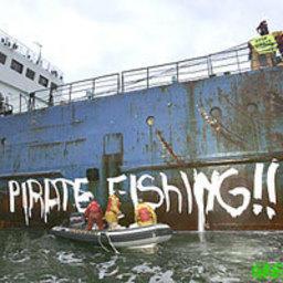 Активисты «Гринпис» пытались блокировать разгрузку российского судна в порту Голландии