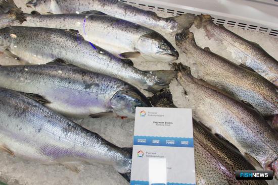 Под брендом «Русская рыба» были представлены достижения и продукция компаний-участников выставки
