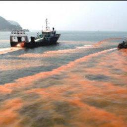 «Красная волна» уходит от корейских берегов