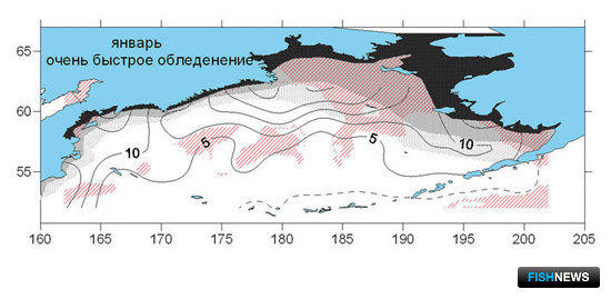 Карта вероятности обледенения на акватории Берингова моря в январе