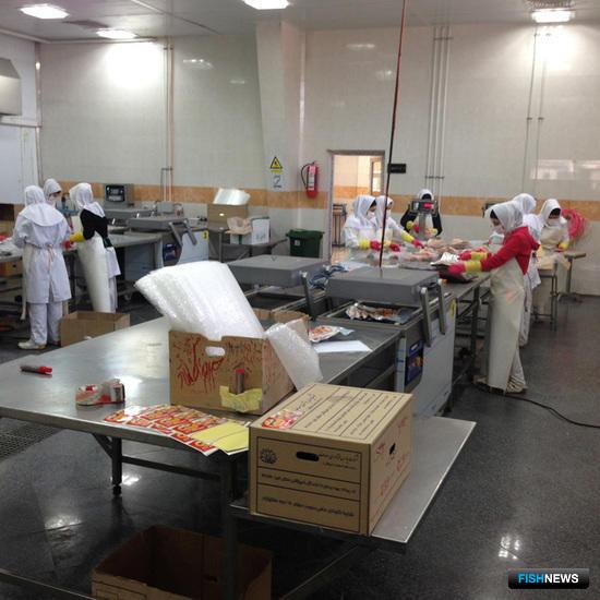 В ходе визита российские предприниматели посетили рыбоперерабатывающие предприятия Ирана