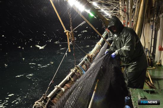 Рыбаки «Гидростроя» ежегодно добывают более 200 тыс. тонн водных биоресурсов. В составе холдинга – четыре мощных рыбоперерабатывающих комплекса на Итурупе, Шикотане, Сахалине