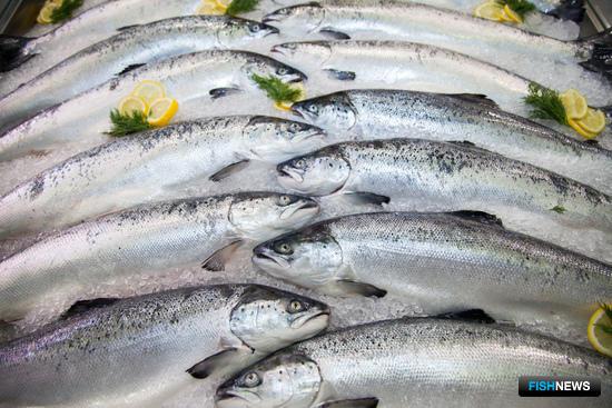 Рыба на World Food Moscow в 2016 г.