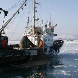 Прибрежный лов у берегов Сахалина