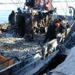 Прибрежный лов
