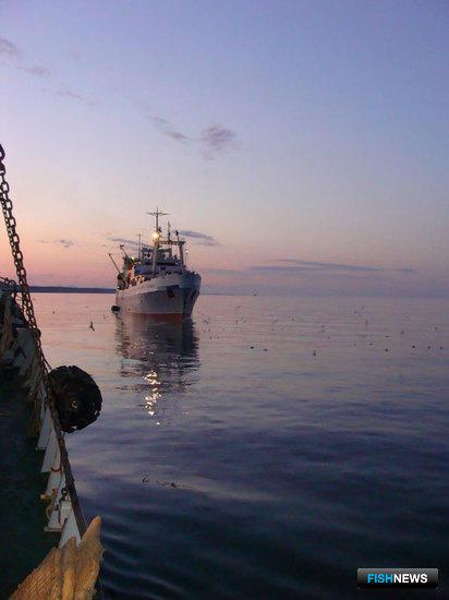 О мерах стимулирования модернизации существующего и строительства нового рыбопромыслового флота в РФ