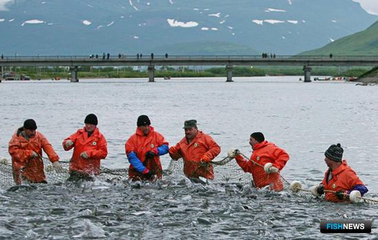 Поздравляем всех работников отрасли с Днем рыбака!