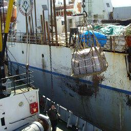 По итогам путины 14 БАТМов «Океанрыбфлота» приняли 29 тыс. тонн лосося