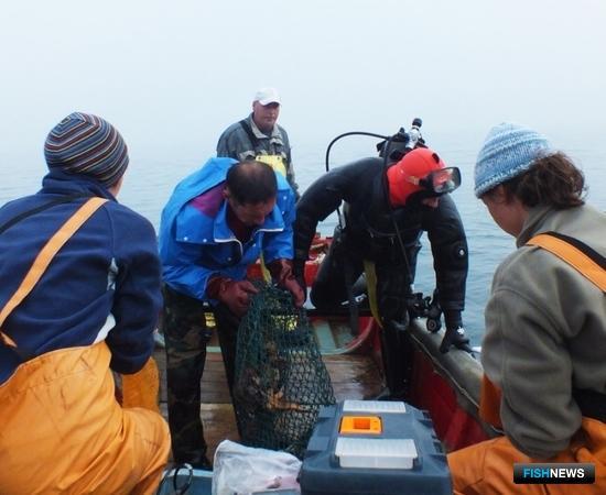 Съемки в прибрежье Южных Курил продлятся до 25 августа. Автор фото Игорь Бобырь.