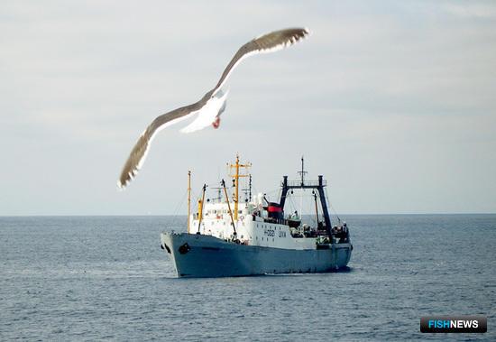 Изменения в закон о рыболовстве вызвали новые вопросы