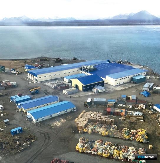 Ежегодно ООО «Технологическое оборудование» вводит в строй на Дальнем Востоке до трех рыбоперерабатывающих заводов