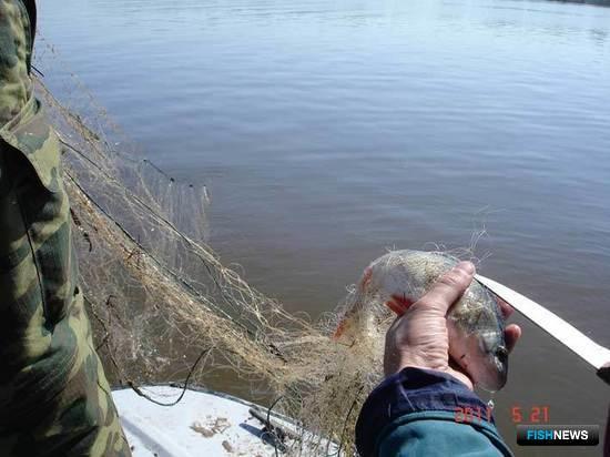 Совместные рейды на реках Самарской области