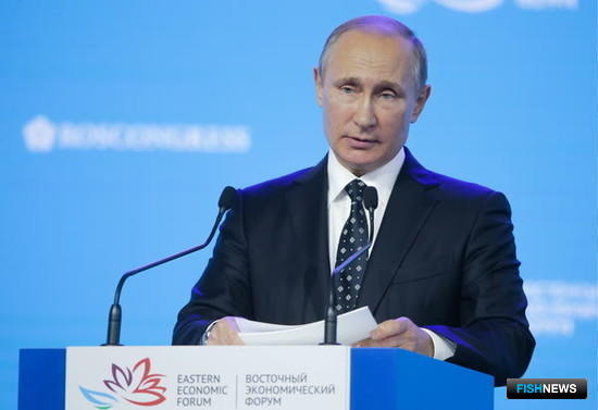 Президент Владимир ПУТИН. Из фотобанка ВЭФ
