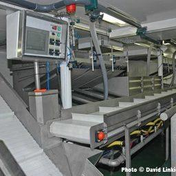 В) Кормовой траулер-морозильщик 31,7 х 10,4 м и обьемом трюма 343 куб.м (190 тонн мороженных блоков). Судно укомплектовано оборудованием для сортировки, мойки, разделки и взвешивания рыбы и ее заморозки обьемом 32 тонны/сутки.