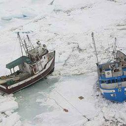 Рыбаки и зверобои вырвались из ледового плена вблизи Ньюфаундленда