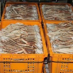 «Подфлажник» Izreal задержали в начале августа с грузом крабовой продукции на борту. Фото пресс-службы Погрануправления ФСБ России по Сахалинской области