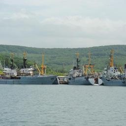 «Приморец»: Наша стратегия – обновление флота и сохранение кадров