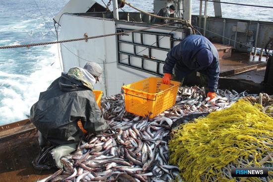 Конкретику по новому закону о рыболовстве придется подождать