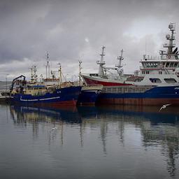 Суда для лова сельди, Дания. Фото: Evert-Jan Daniëls, Dutch Fish Marketing Board
