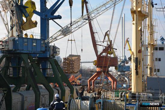 Транспортный рефрижератор «Канариан Рифер» привез во Владивосток около 3,5 тыс. тонн мороженой сельди. Фото пресс-службы ОАО «Океанрыбфлот»