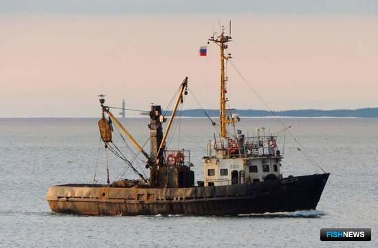 В Крыму под флагом РФ – 38 рыбацких судов. Фото пресс-службы Азово-Черноморского ТУ Росрыболовства