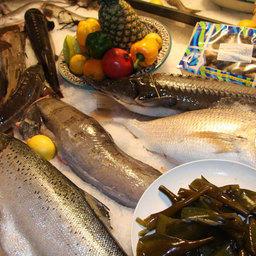 Фестиваль российской рыбы и морепродуктов, Москва, 27 мая 2010 г.